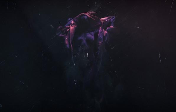 Картинка Девушка, Минимализм, Girl, Фон, Art, Царапины, Hani Jamal, by Hani Jamal, Cosmic Illusions