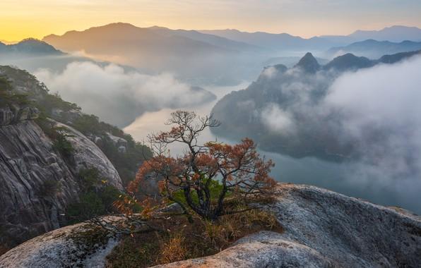 Картинка осень, облака, пейзаж, горы, природа, туман, река, дерево, скалы, рассвет, утро, кусты, сосна, Южная Корея, …