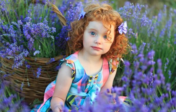 Картинка цветы, корзина, Девочка