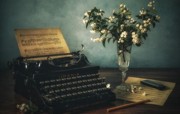 Картинка букет, печатная машинка, натюрморт, жасмин