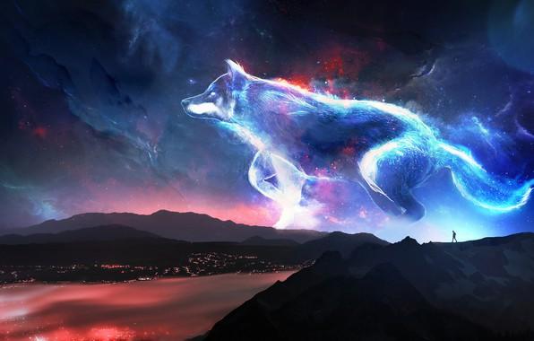 Картинка небо, звезды, горы, ночь, река, человек, волк