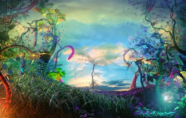 Картинка облака, деревья, цветы, природа, lights, красота, огоньки, trees, nature, flowers, clouds, beauty, blue sky, другой …