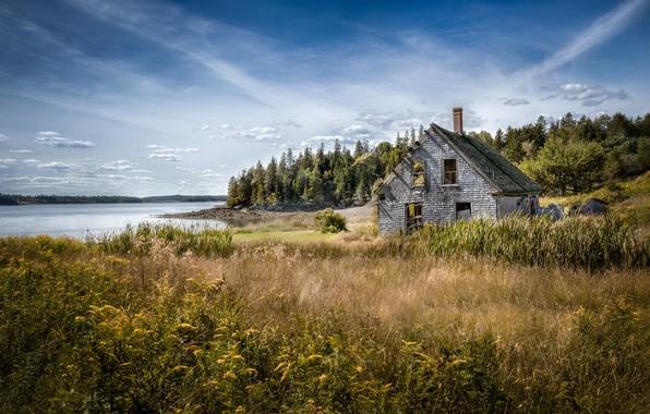 Картинка осень, природа, дом, река, берег