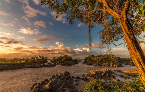 Картинка небо, солнце, облака, деревья, ветки, тропики, река, камни, течение, Laos