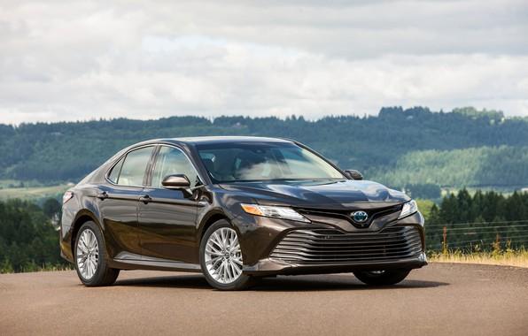 Картинка стоянка, Toyota, седан, 2018, Camry, XLE Hybrid