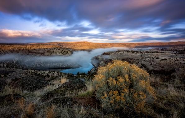 Картинка небо, трава, облака, пейзаж, горы, природа, туман, река, холмы, растительность, вид, растение, куст, даль, утро, …