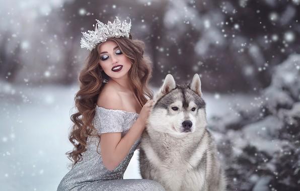 Картинка девушка, снег, поза, собака, корона, макияж, платье, декольте, длинные волосы, локоны, маламут, Марина Жаринова