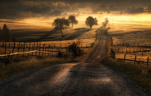 Картинка дорога, солнце, поля, Adnan Bubalo