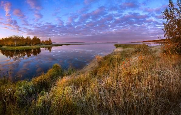 Картинка иней, осень, лес, трава, пейзаж, закат, природа, река, берега