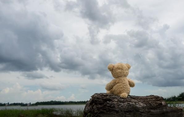 Картинка песок, море, пляж, тучи, игрушка, медведь, мишка, доска, beach, bear, sea, teddy, одинокий, cute, lonely