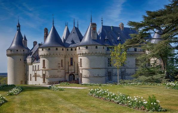 Картинка деревья, цветы, парк, замок, Франция, архитектура, France, Château de Chaumont-sur-Loire, Замок Шомон-Сюр-Луар