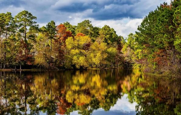 Картинка осень, лес, небо, вода, солнце, облака, деревья, отражение, река, США, Техас