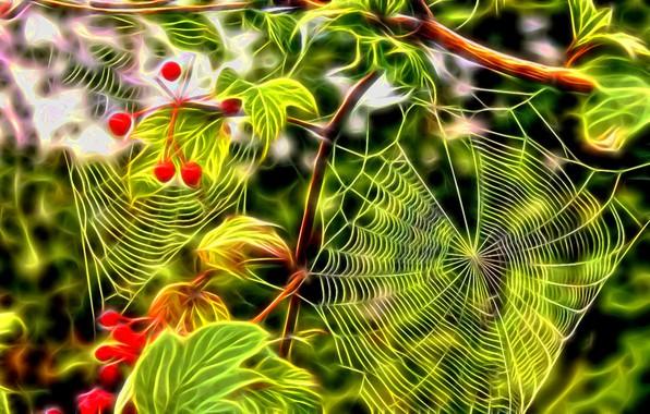 Картинка листья, яркие краски, ветки, ягоды, рендеринг, паутина, куст калины, фрактальное свечение, палитра уходящего лета