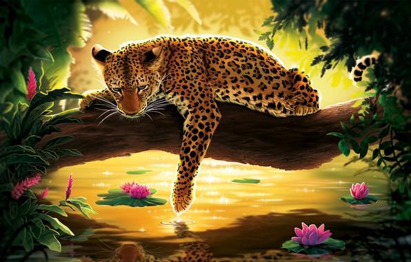 Картинка вода, цветы, дерево, леопард
