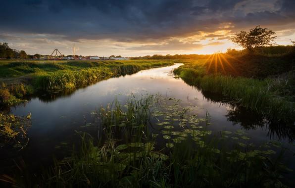 Картинка закат, природа, вечер, канал, водяные лилии