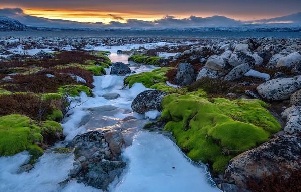 Картинка зима, берег, лёд