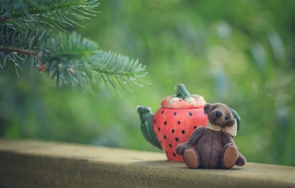 Картинка ветки, детство, зеленый, фон, настроение, чай, игрушка, чайник, медведь, мишка, чаепитие, медвежонок, сидит, хвоя, плюшевый, …