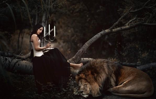 Картинка девушка, лев, свечи, Sheila Cabrera