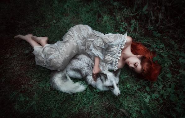 Картинка лето, трава, листья, девушка, природа, поза, серый, животное, белое, ноги, поляна, сон, ситуация, сказка, платье, …