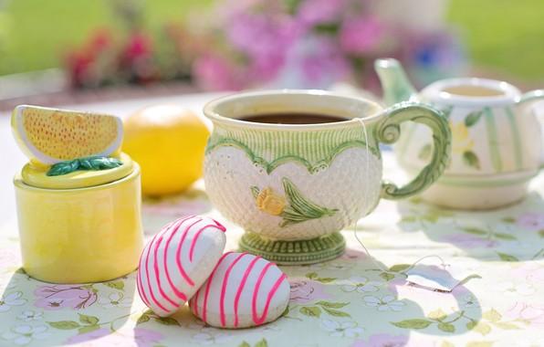 Картинка лето, свет, цветы, уют, стол, лимон, чай, еда, чайник, чаепитие, кружка, чашка, сладости, посуда, тени, …