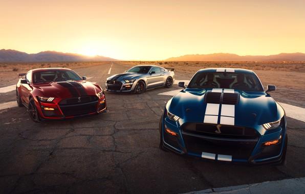 Картинка дорога, солнце, машины, фары, Ford, спортивная, спорткар, колёса, Ford Mustang Shelby GT500, 2020