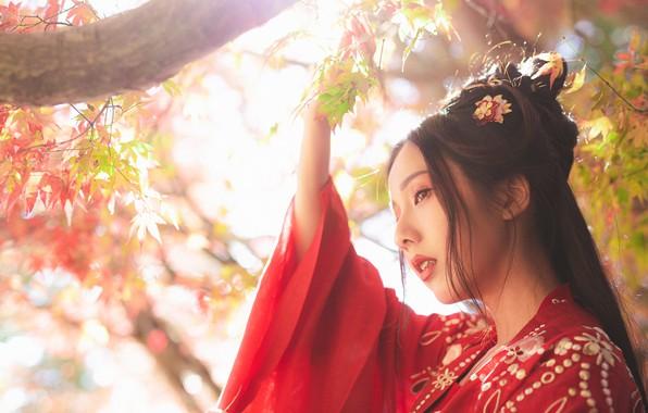 Картинка листья, девушка, свет, природа, лицо, стиль, портрет, ветка, азиатка, красное кимоно