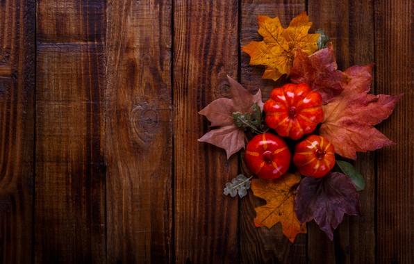 Картинка осень, листья, фон, доски, colorful, тыква, клен, wood, background, autumn, leaves, осенние, pumpkin, maple