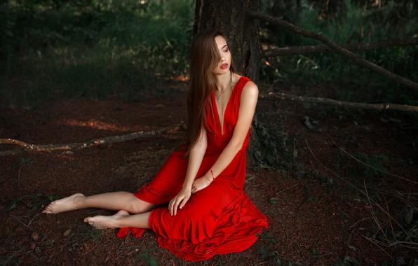 Картинка Девушка, платье, сидит, кустарники, Альберт Лесной