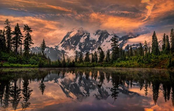 Картинка деревья, пейзаж, закат, горы, природа, озеро, отражение, ели, США, Шуксан, Perry Hoag, Shuksan