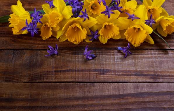 Картинка цветы, желтые, yellow, wood, flowers, нарциссы, spring