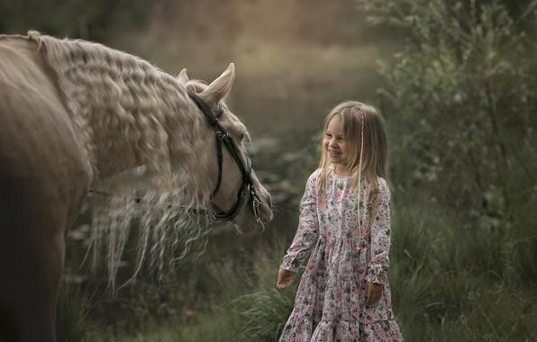 Картинка лето, конь, девочка