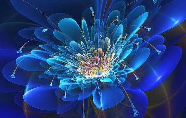 Картинка цветок, фракталы, красота, неон, лепестки, flower, beauty, neon, компьютерная графика, petals, соцветие, fractals, computer graphics, …