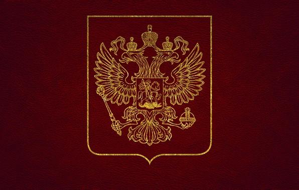 Картинка кожа, золотой, герб, россия, красная, двуглавый орел, герб России