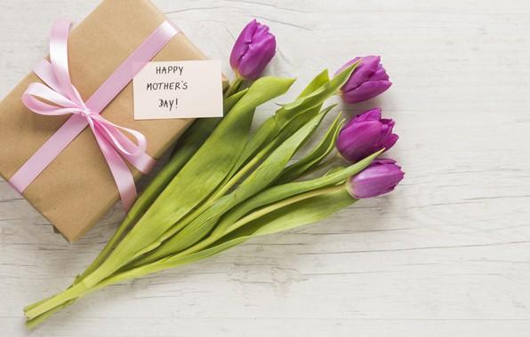 Картинка цветы, подарок, букет, тюльпаны, happy, flowers, tulips, purple, gift box, mother's day