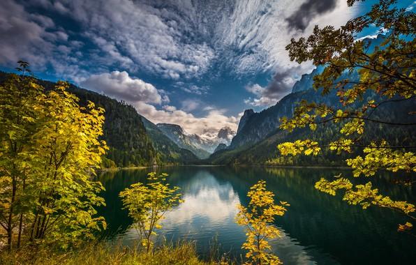 Картинка лес, горы, озеро, Австрия, озеро Гозау, Gregor Thelen