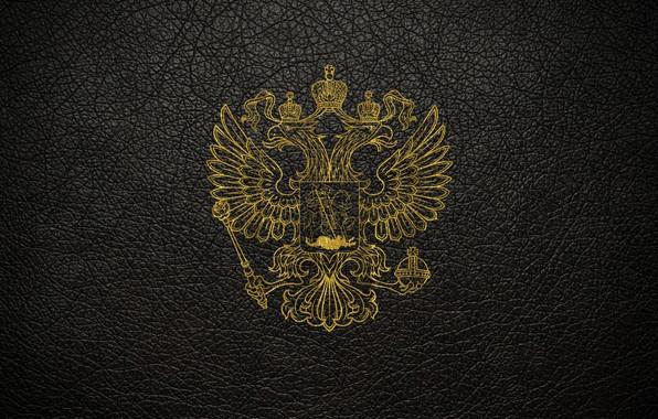 Картинка кожа, царапины, золотой, черный фон, герб, россия, герб россии