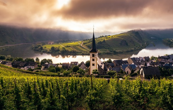 Картинка church, Misty Morning, mosel, trier, weinberg