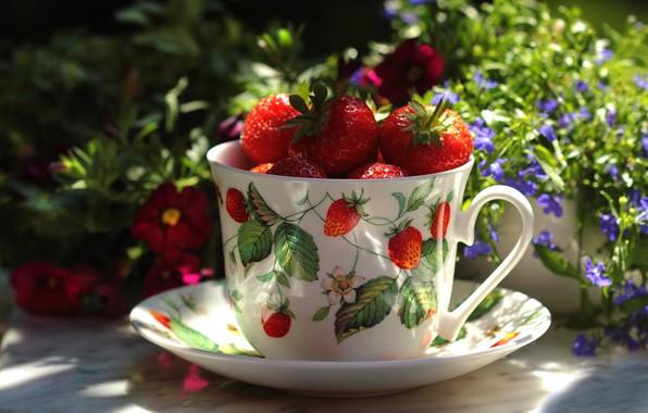Картинка лето, свет, цветы, стол, настроение, еда, мило, клубника, кружка, чашка, натюрморт, цветочки, блюдце, ягодки, дача, …