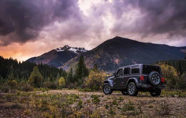 Картинка лес, небо, растительность, вершины, 2018, Jeep, тёмно-серый, Wrangler Sahara