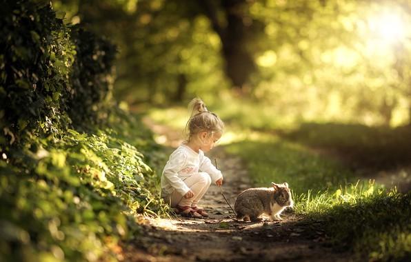 Картинка лето, трава, природа, животное, кролик, девочка, тропинка, малышка, ребёнок, Radoslaw Dranikowski