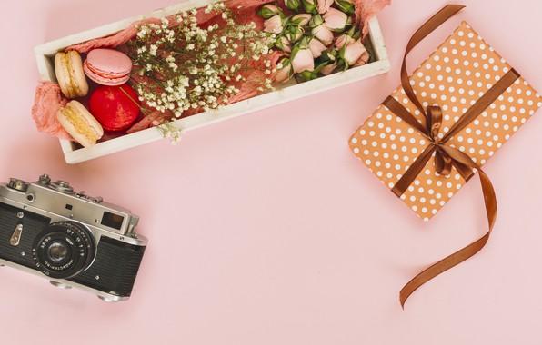 Картинка цветы, подарок, розы, pink, flowers, пирожные, gift, roses, macaroon, french, macaron, макаруны