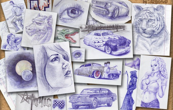 Картинка животные, люди, рисунки, автомобили, Доска воспоминаний