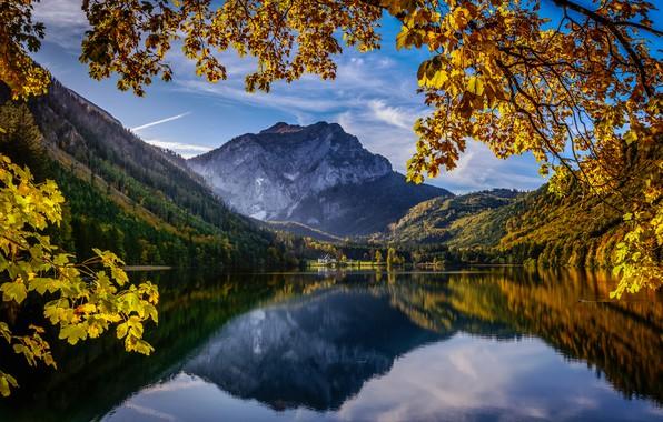 Картинка осень, горы, ветки, озеро, отражение, Австрия, Альпы, Austria, Alps, Upper Austria, Верхняя Австрия, Langbathseen, Озеро …
