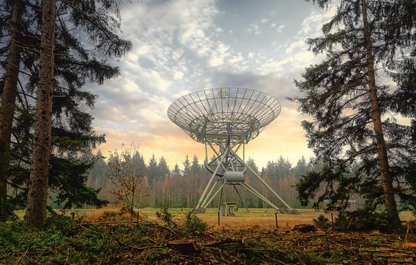 Картинка осень, природа, антенна