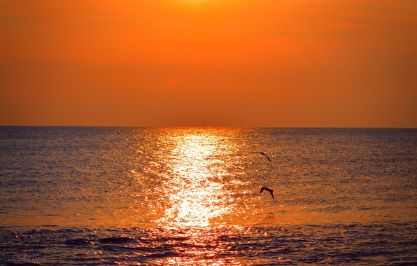 Картинка Закат, Море, Sunset, Sea