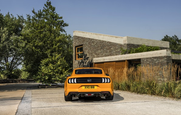 Картинка оранжевый, Ford, стоянка, 2018, корма, фастбэк, Mustang GT 5.0