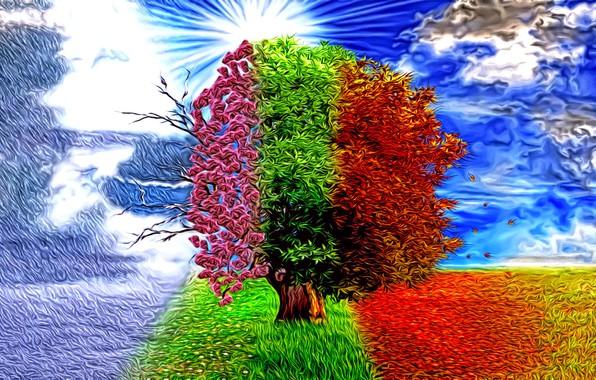 Картинка абстракция, рендеринг, фантазия, дерево, времена года, арт, зима-весна-лето-осень