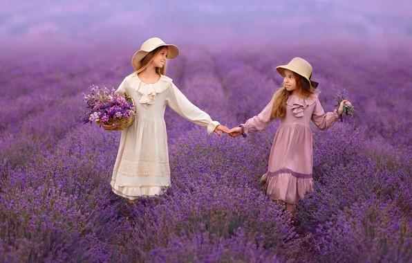 Картинка цветы, девочки, дружба, лаванда