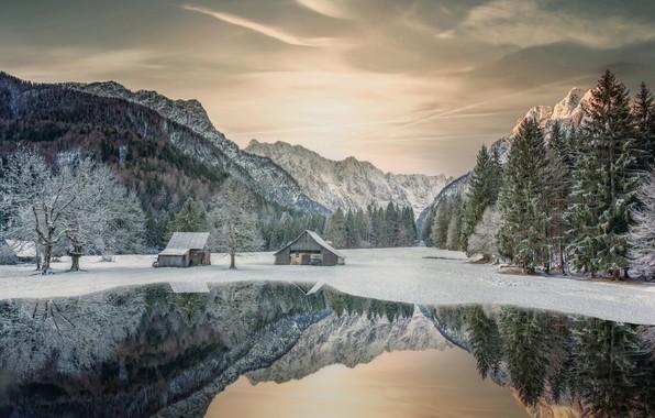 Картинка зима, снег, деревья, горы, озеро, отражение, Словения, Slovenia, Юлийские Альпы, Julian Alps, Ратече, Rateče, Planica …