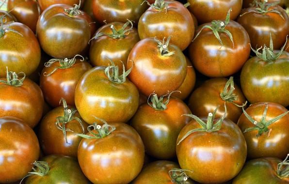 Картинка блеск, еда, урожай, оранжевые, овощи, помидоры, много, томаты, золотистые, помидорки